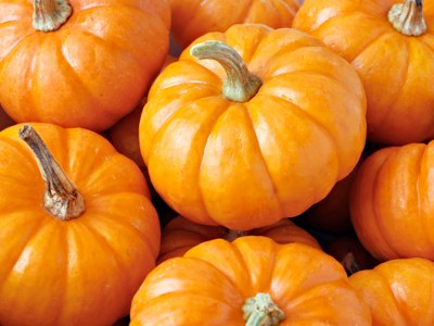 Pumpkin Spice Facial – $20 OFF